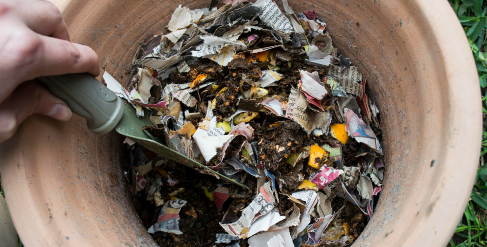 Lima-Compost-Papel-X