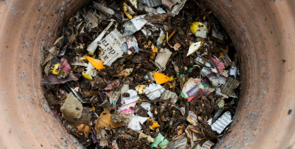 Lima-Compost-Papel-Y